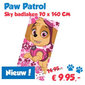 Badlaken Paw Patrol Sky