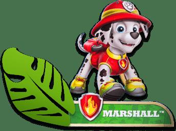 marshall-pawpatrol